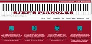 Portfolio - De Nijs Art - Sjef's pianoles